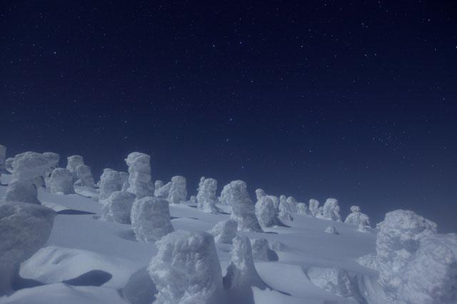 星寂の樹氷原