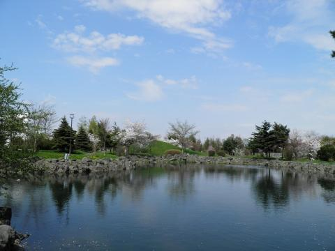 2012.05.10sakura 077