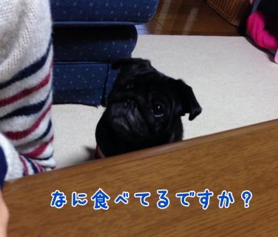 image+(4)_convert_20131113191346.jpg
