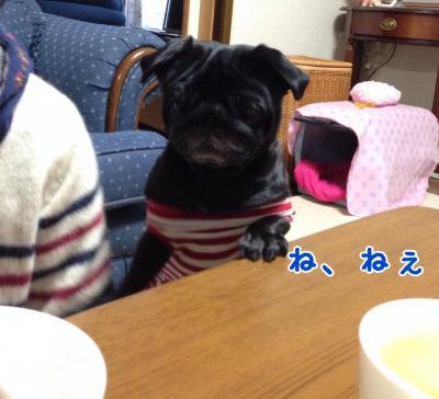 image+(5)_convert_20131113191634.jpg