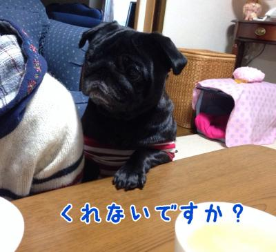 image+(7)_convert_20131113191524.jpg