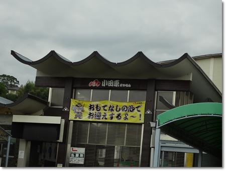 20111024-DSC00319.jpg
