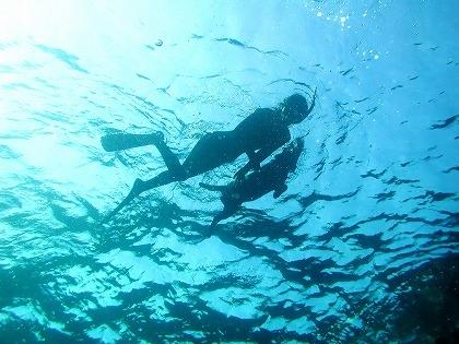 沖縄で学生スポーツ専門学校におすすめ冬休み正月など団体向けダイビング