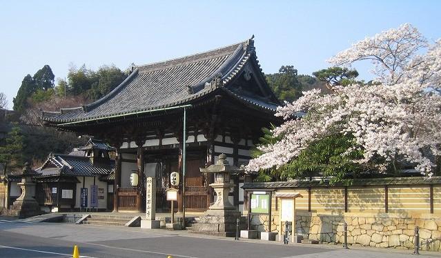 桜の石山寺山門