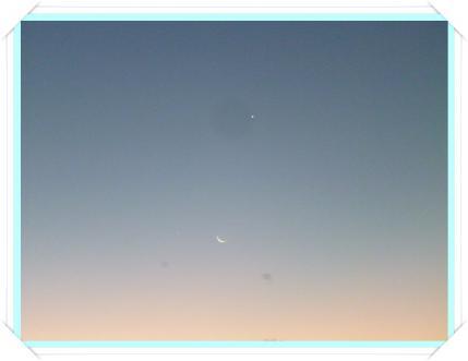 月と金星!!