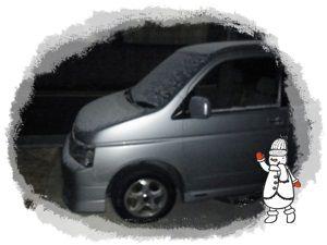 2011_0304_060730-R1008366