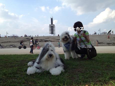 resize6851.jpg