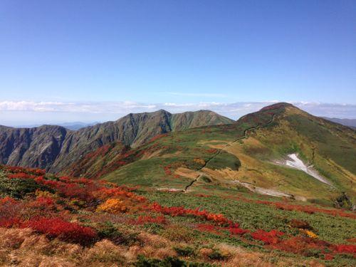 8東北から秋が始めっています