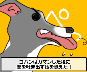 kusuri004.png