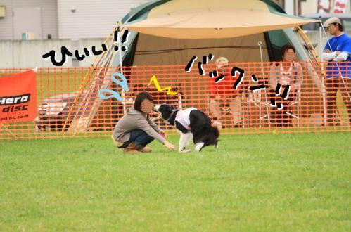 IMG_2228★
