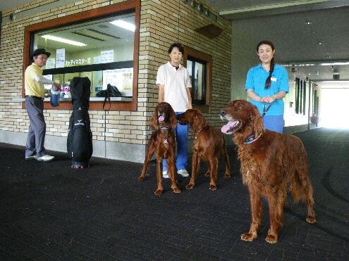 たかつえカントリークラブ-3