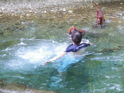 IMGP7984泳ぐ