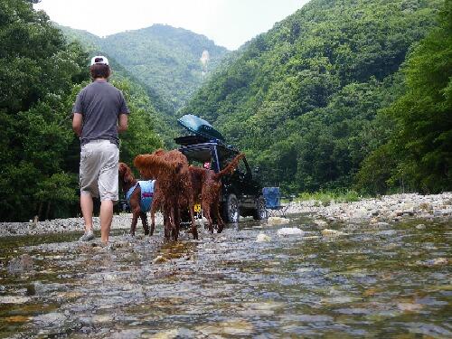 休日の川遊び