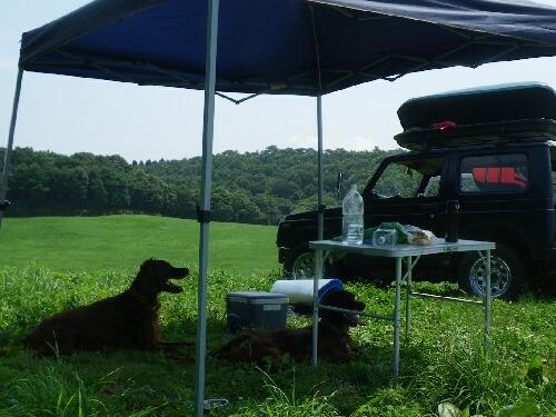 デイキャンプ 草原