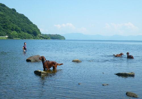 休日・・・湖で