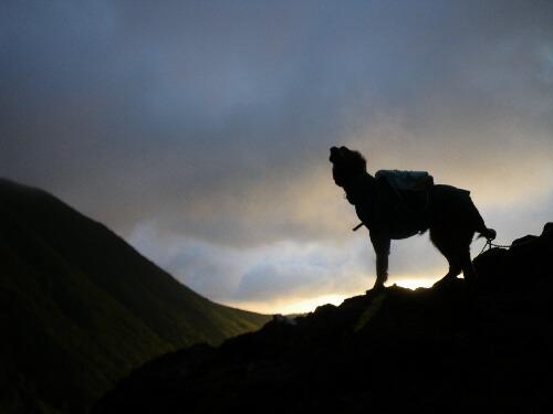 2010.09.29 茶臼登山