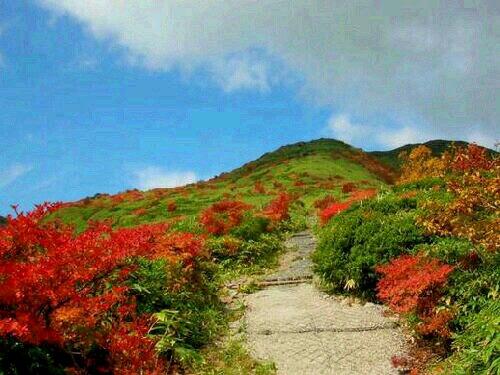 清水平紅葉