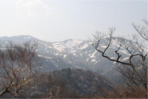 2010.10.27 初雪