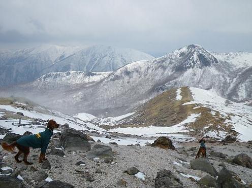 山登り 030