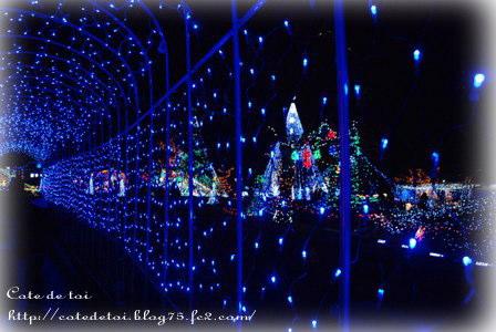 12-15_20111215235106.jpg