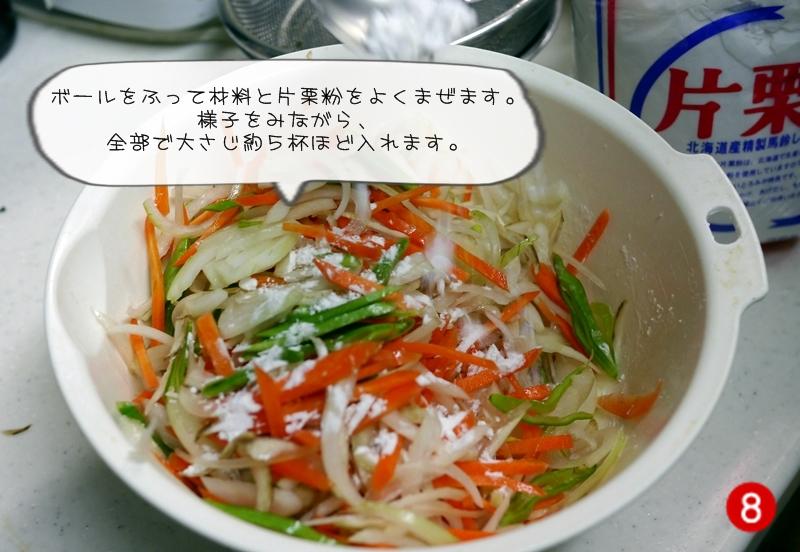 薩摩揚げ (8)