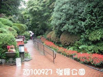 DSCF1182-1.jpg