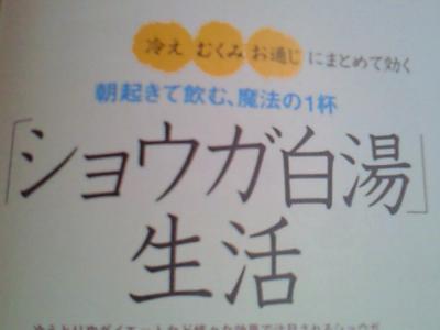 NEC_2478.jpg