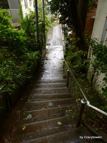 日吉本町3丁目の丘(横浜市)