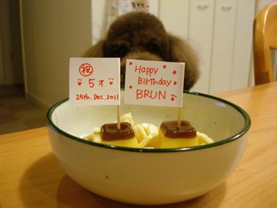 Brun407