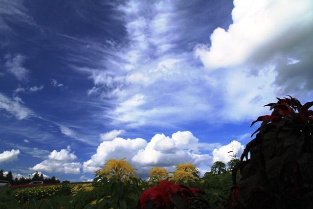 185雲がぐんぐん