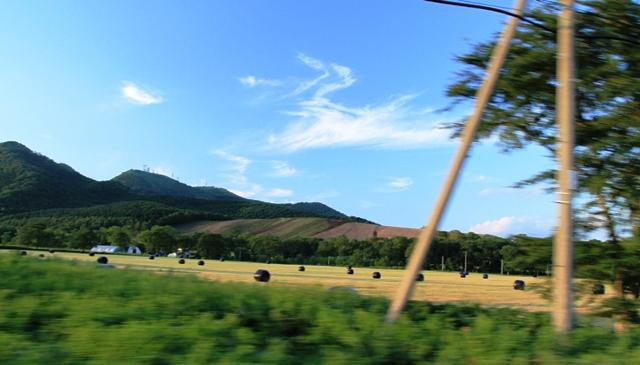 061牧草ロール