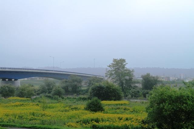153宝来橋