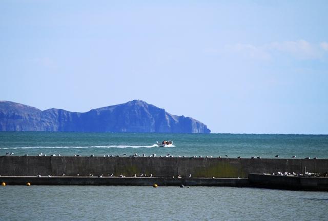 259漁港