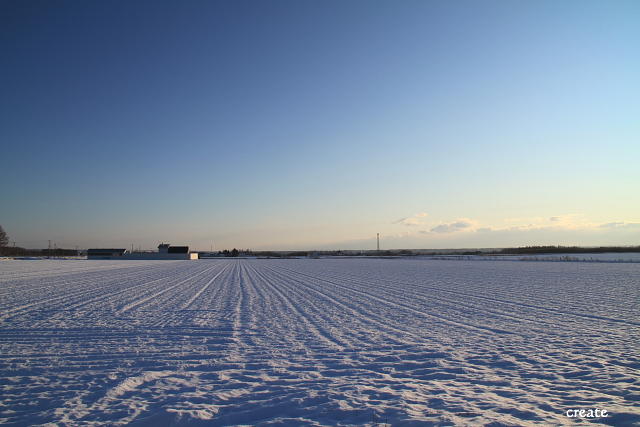 DPP0 668 019 青空と雪原0443