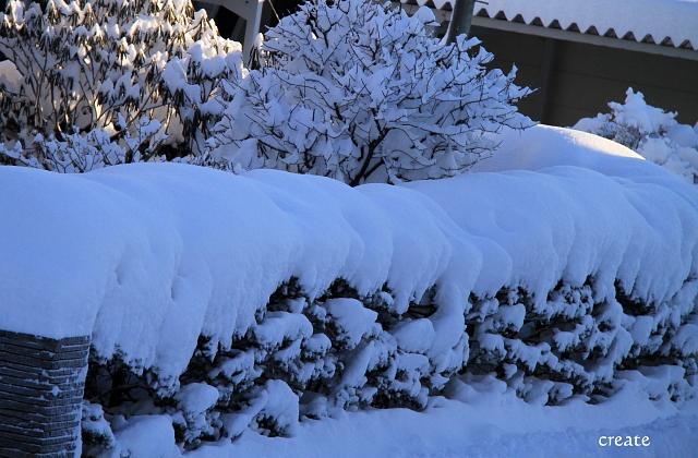 DPP0 668 035 雪の芸術0443
