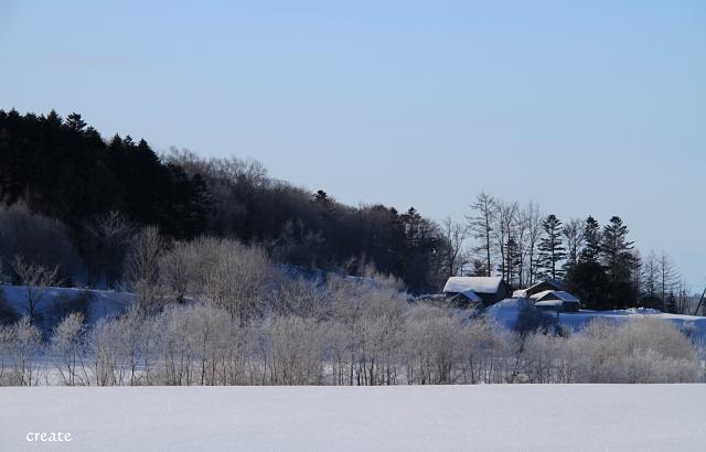 DPP0 668 303屋根にも雪がいっぱ0443