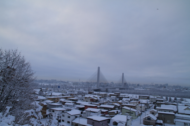 DPP0 668 018  雪景色0443