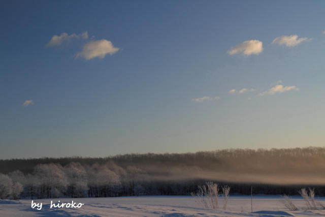DPP 240 けあらしと霧氷の全景0001