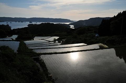 棚田と海01