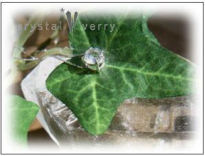 crystal-verry* オーナーブログ*-b-0053