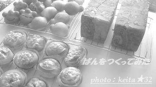 NEC_0157a.jpg