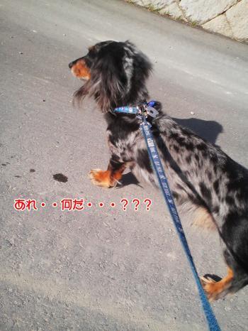 縺ゅl繝サ繝サ縺ェ繧薙□繝サ繝サ繝サ・歙convert_20101210004659