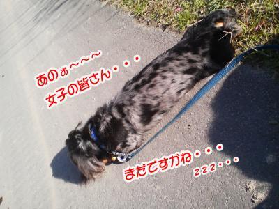 縺ゅ・縺会ス槭・繝サ螂ウ蟄舌・逧・&繧薙・繝サ繝サ_convert_20101210005208