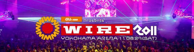 wire11.jpg