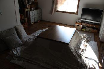 2011-0104-4.jpg