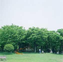 20100605.jpg