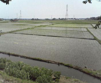 20110521布鎌の風景1