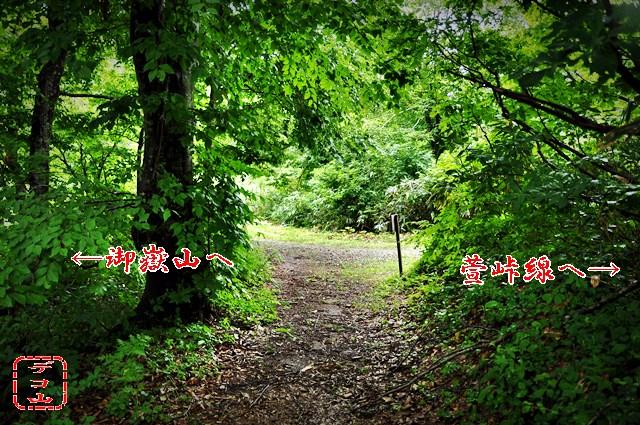 ykt43tk3n_07.jpg