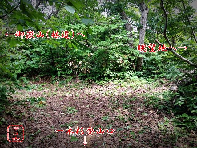 ykt43tk3n_08.jpg