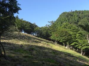 鉄山から弥山へ